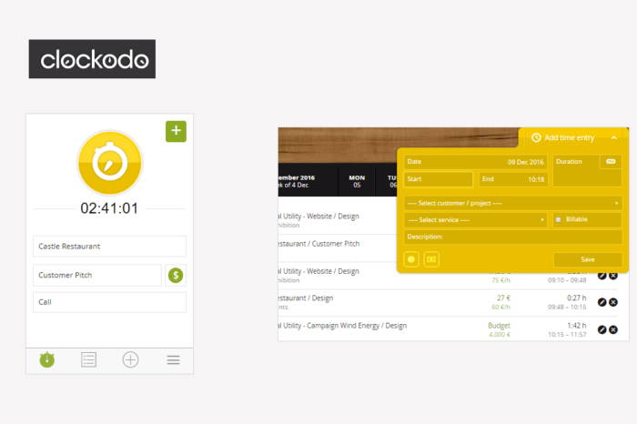 Clockodo WebApp Review