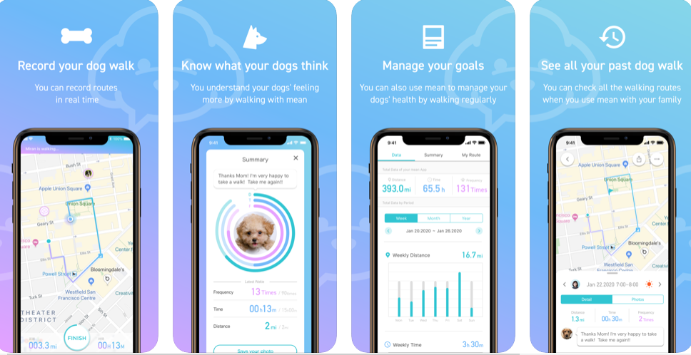 Make Your Dog Walking Experience Better with Mean – For All Doggies